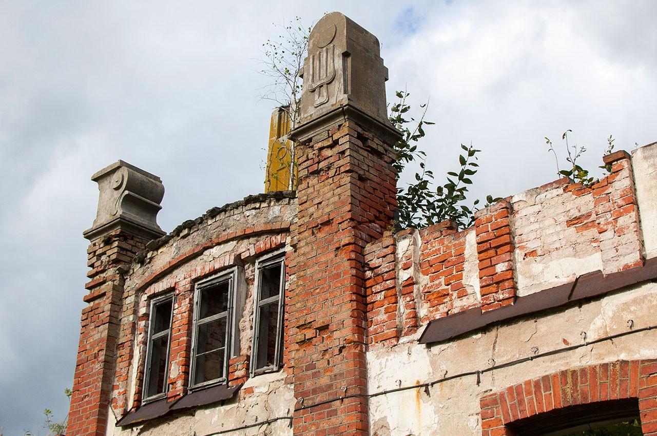 Augalai ant stogo